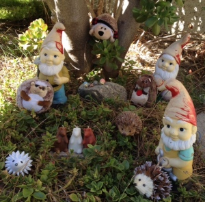 Hedgehogs and Gnomes